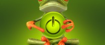 frog_preview